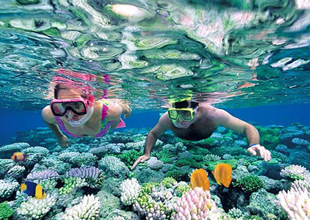 Best Diving & Snorkeling Excursions from Bavaro, Punta Cana.
